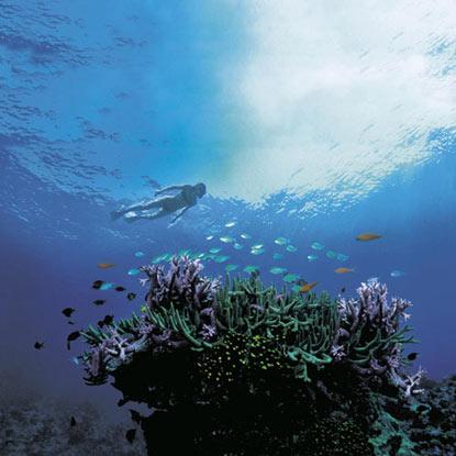 Australia Great Barrier Reef
