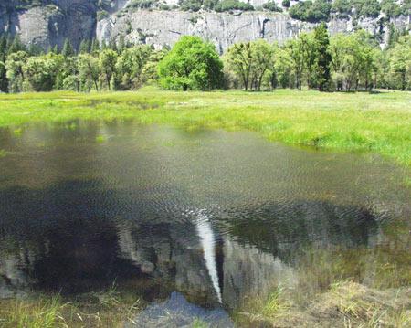 Upper Yosemite Fall Reflection