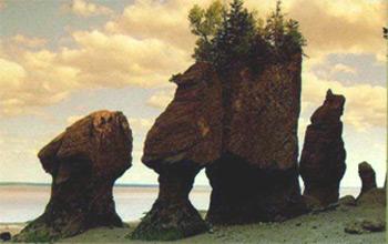 Bay of Fundy Hopewell Rocks